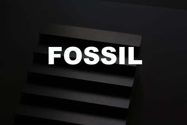 Fossil nasa apollo 21 romaric Tisserand Alban Le Henry